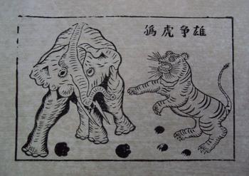 Tranh Đông hồ hình con Hổ